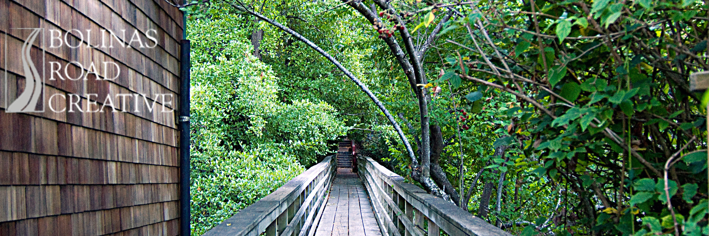 A wooden foot bridges shows a clear path over a strean and through a dense cluster of trees.